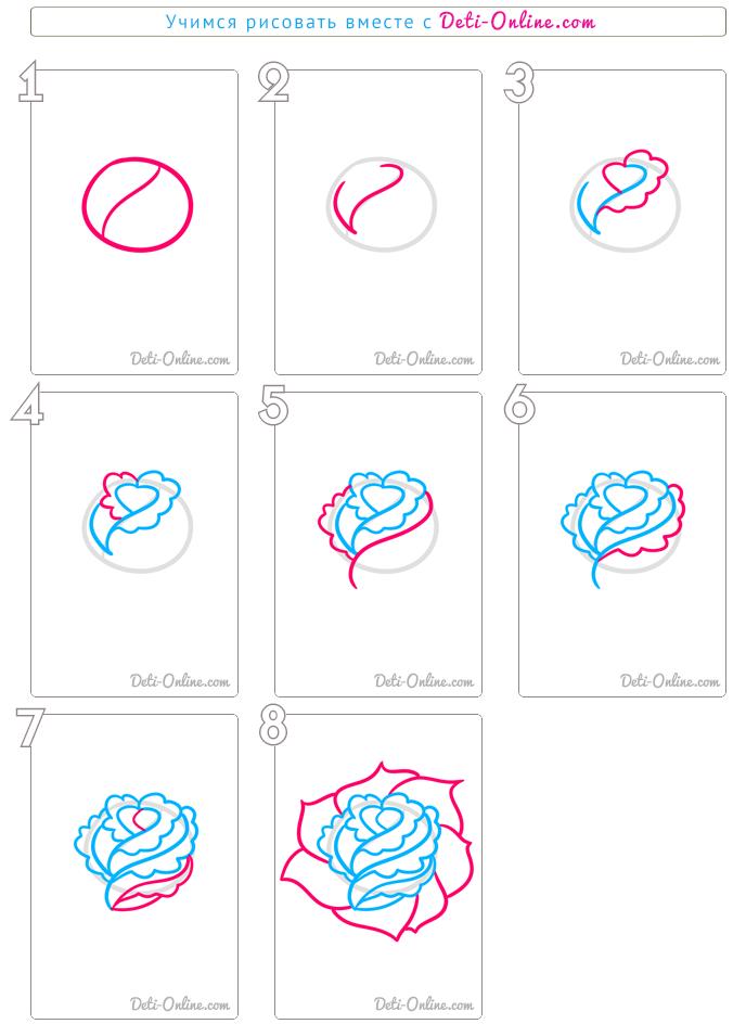 рисуем розу пошагово фото