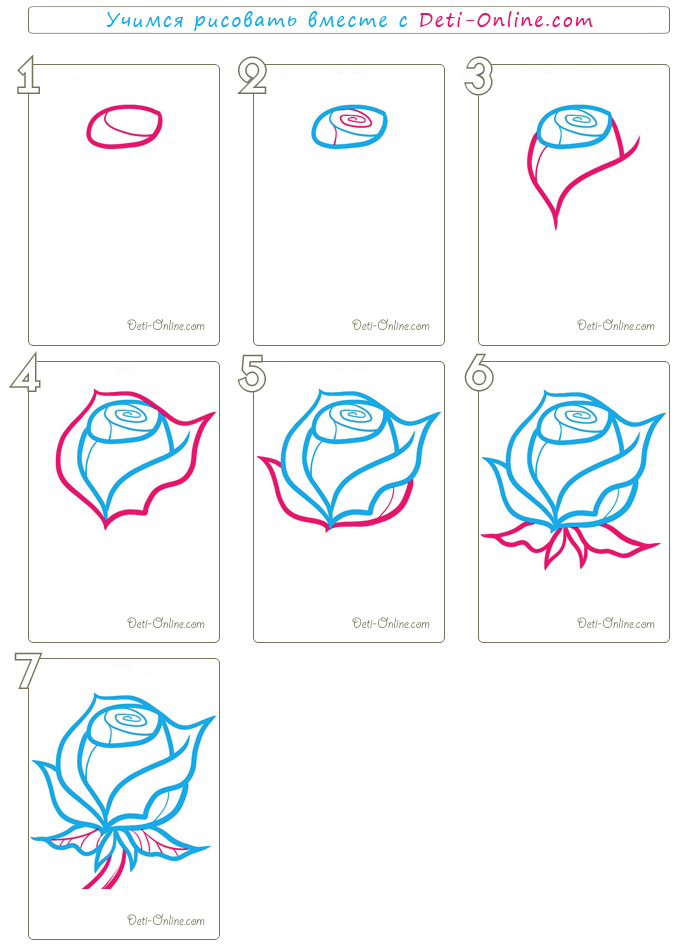 рисуем розу пошагово