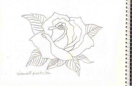 как красиво рисовать