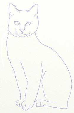 кот поэтапно