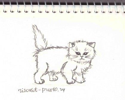 как рисовать котов фото