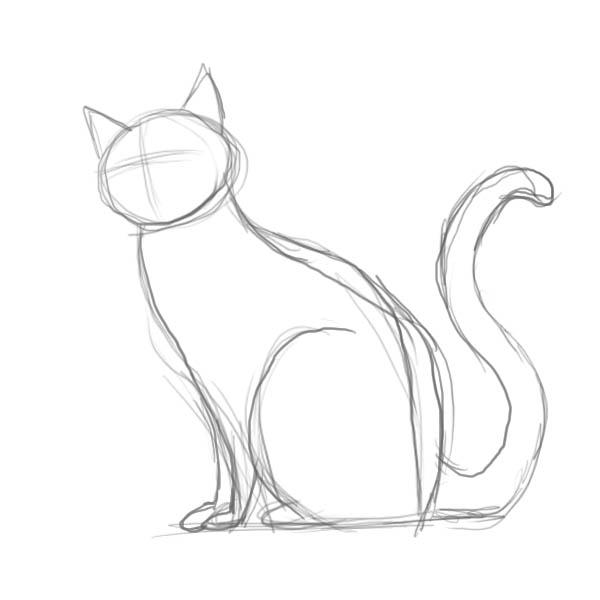 кошка поэтапно