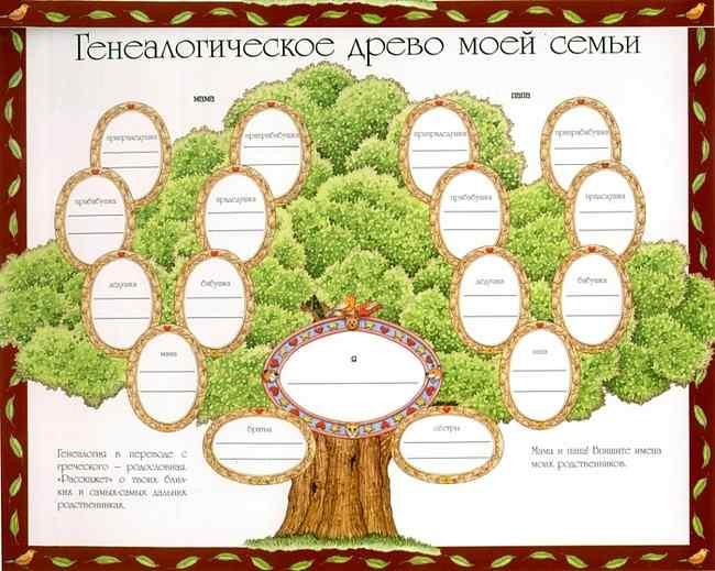 Как нарисовать генеалогическое дерево