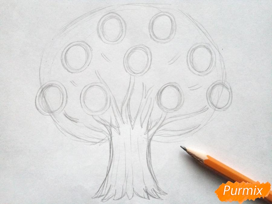 Как нарисовать генеалогическое дерево пошагово