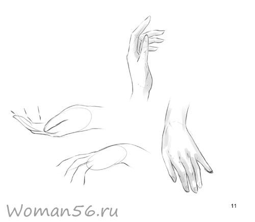 Как нарисовать руку поэтапно